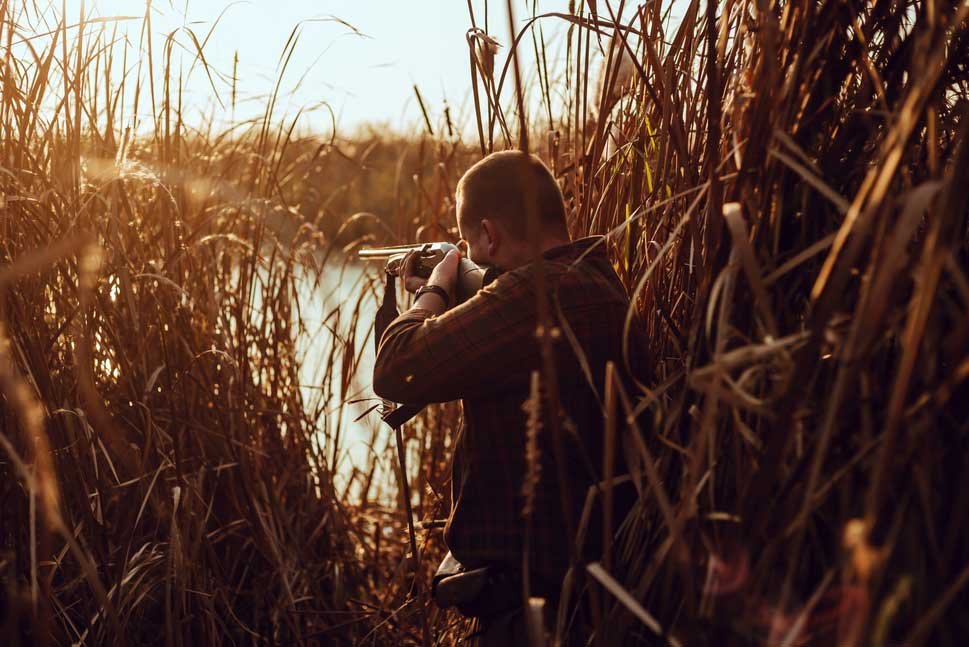what type of shotgun pellets are allowed for waterfowl hunting in the u.s